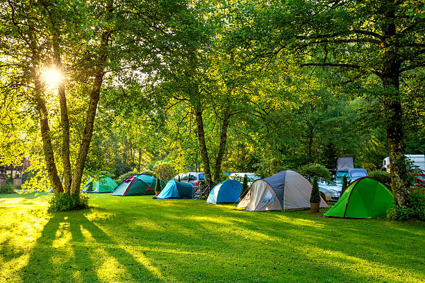 tents camping area, early morning, beautiful natural place - camping stock photos and pictures