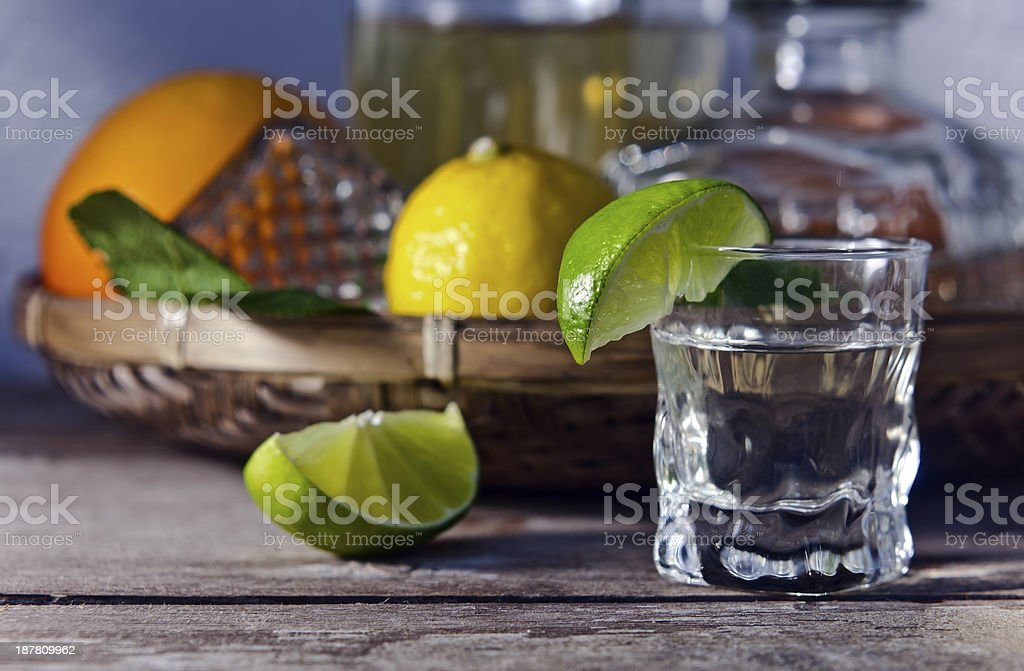 tequila and citrus fruits stock photo