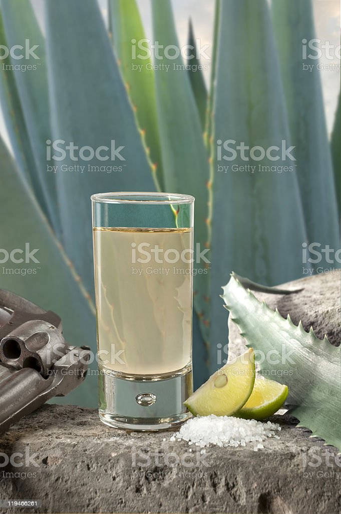 Tequila shot (mexican style) stock photo