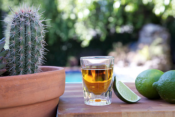 Tequila shot with limes and a cactus. Tequila shot with limes and a cactus in an outdoor setting. tequila shot stock pictures, royalty-free photos & images