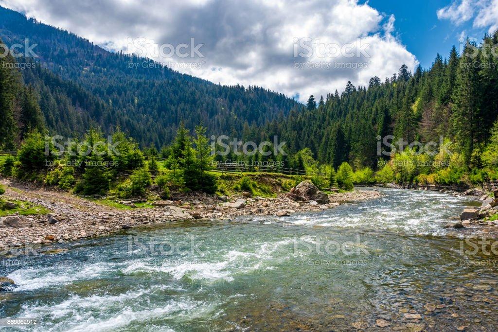 Tereblya river of Carpathan mountains stock photo