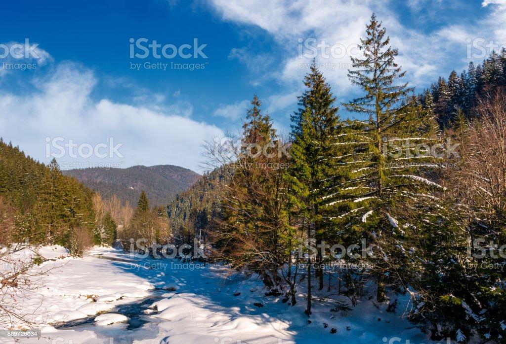 Tereblya river of Carpathian mountains in winter stock photo