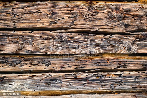 istock Termites eat old and decayed wooden planks 1072168746