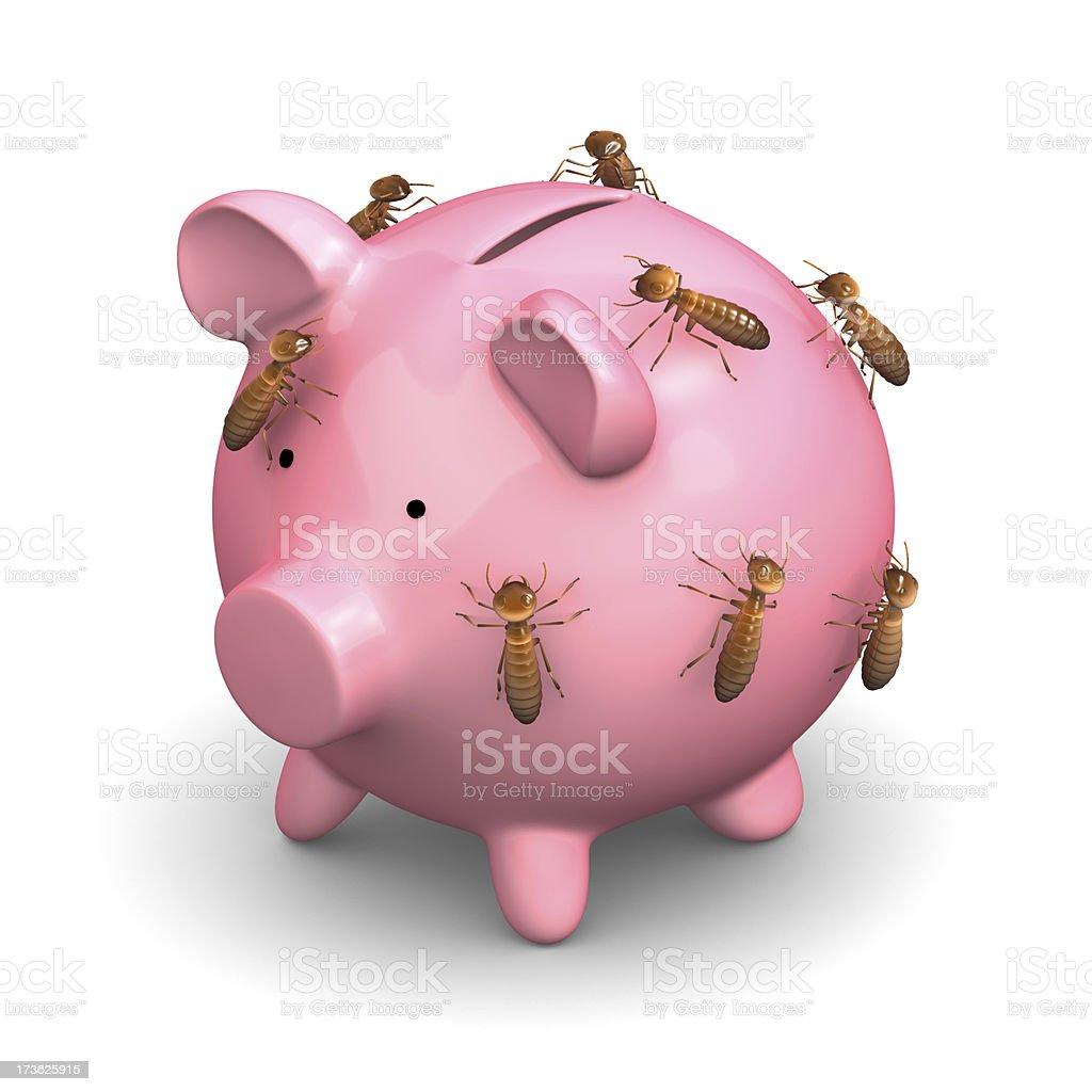 Termites on your savings royalty-free stock photo