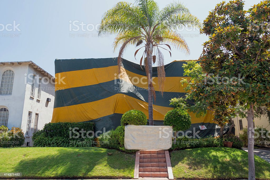 Termites tented House for bug treatment stock photo