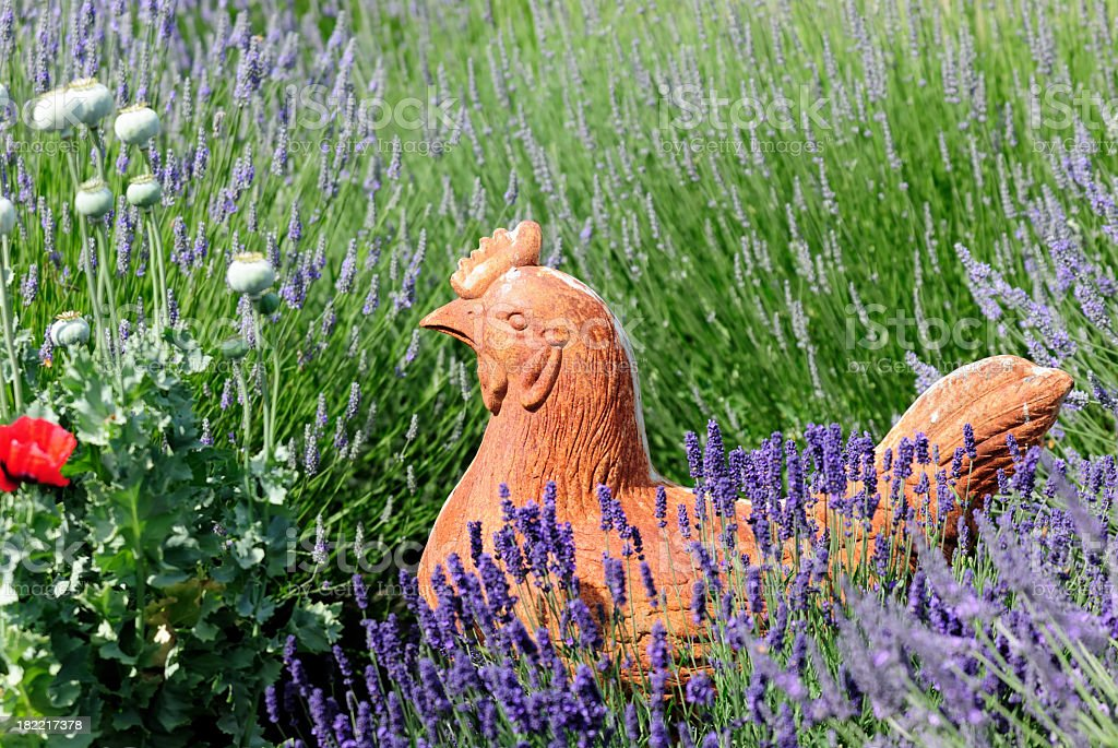 Terra Cotta Chicken and Lavender royalty-free stock photo