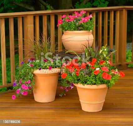 Terra cotta flower planters on wood deck