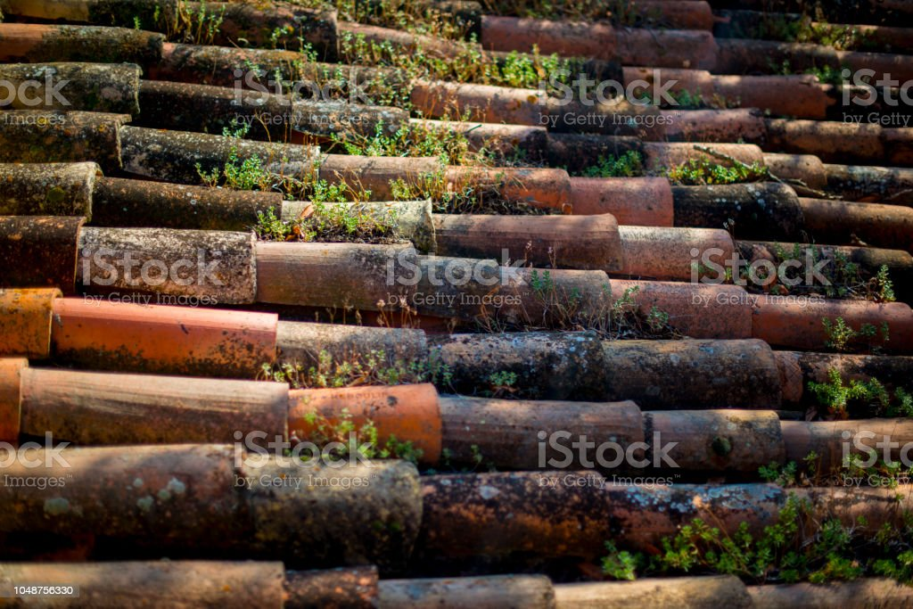 terra cotta tiles on a roof top in france stock photo