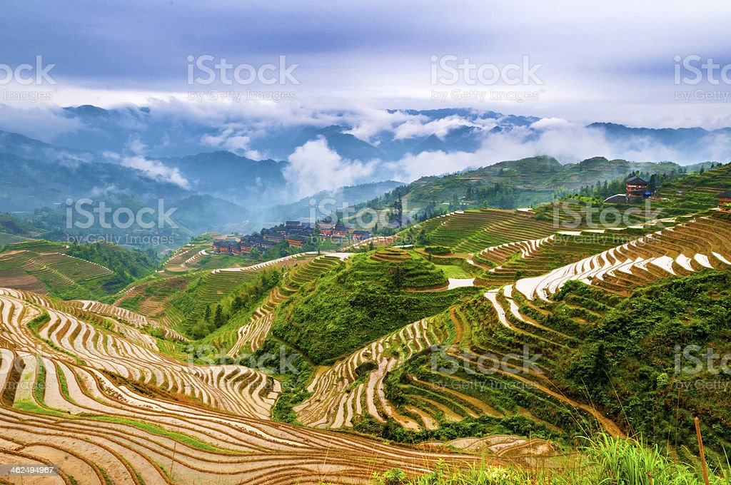 terrace field of Guilin stock photo