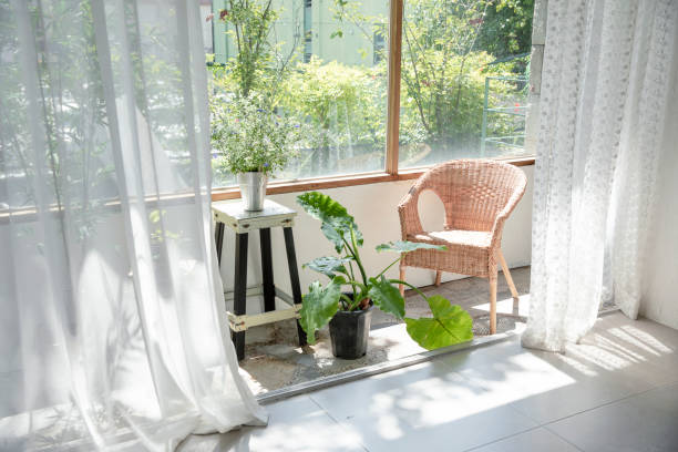 Terrace garden in the morning sunlight through the curtains stock photo