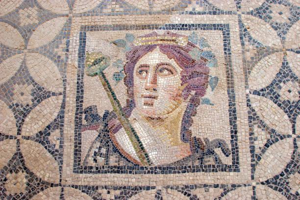 Terrace Houses, Ephesus, Turkey IZMIR, Selcuk, TURKEY- June,11 2005 - Ancient Roman Mosaics from Terrace Houses, Ephesus, Turkey ephesus stock pictures, royalty-free photos & images
