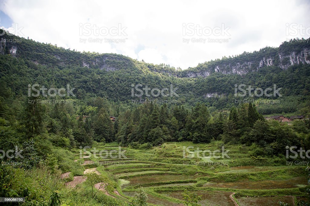 terrace in valley royalty-free stock photo