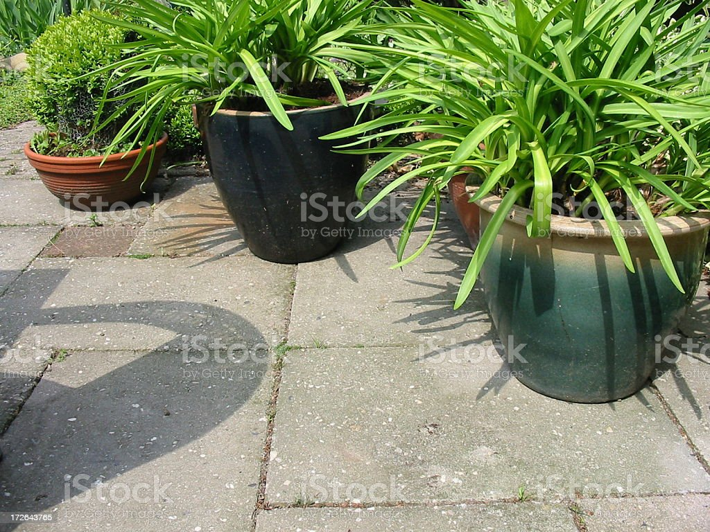 Terrace with plants stock photo