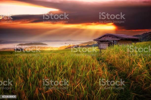 Terraced paddy field in maejam village chaingmai province thailand picture id820808800?b=1&k=6&m=820808800&s=612x612&h=cqwy0l0ilzoqapjjydobbs2 qskh9uynofgcu5pmmy8=