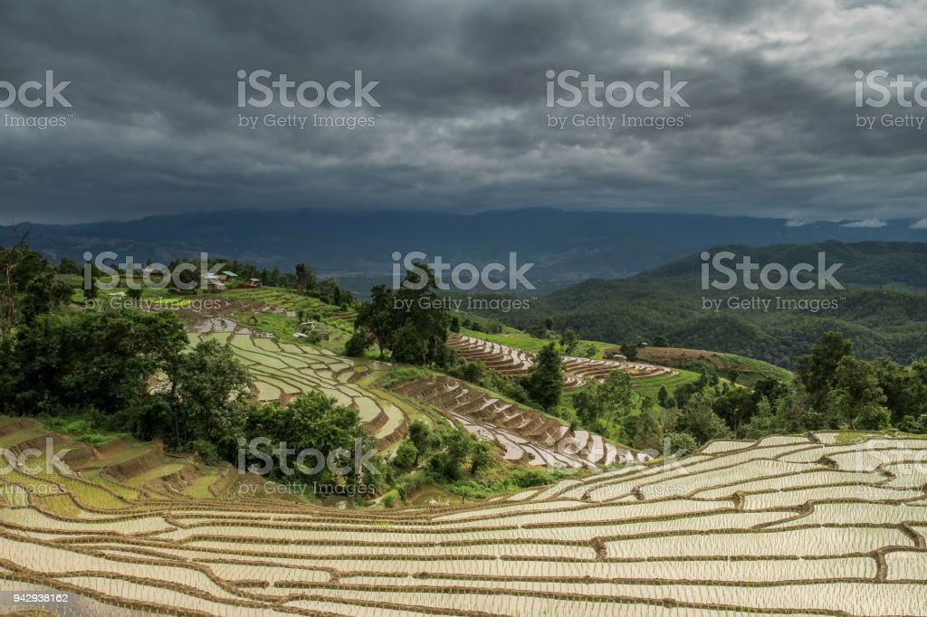 Terraced Paddy Field in Mae-Jam Village , Chiang Mai Province , Thailand stock photo
