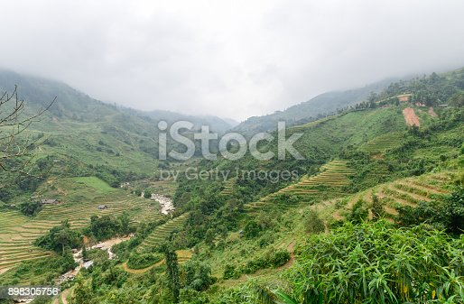 istock Terraced Rice Field after harvest on mountain 898305756