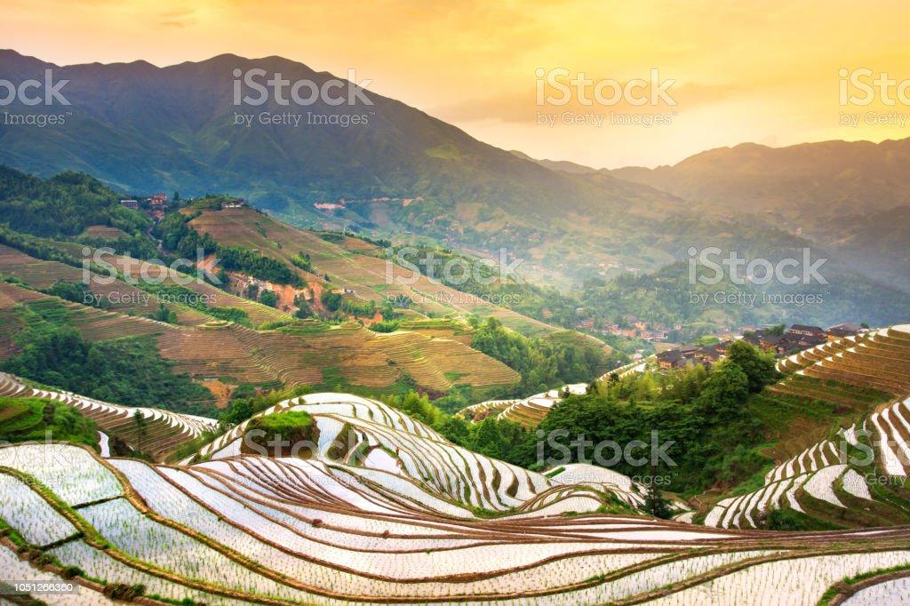 Campo De Terrazas De Arroz De Longji China Foto De Stock Y