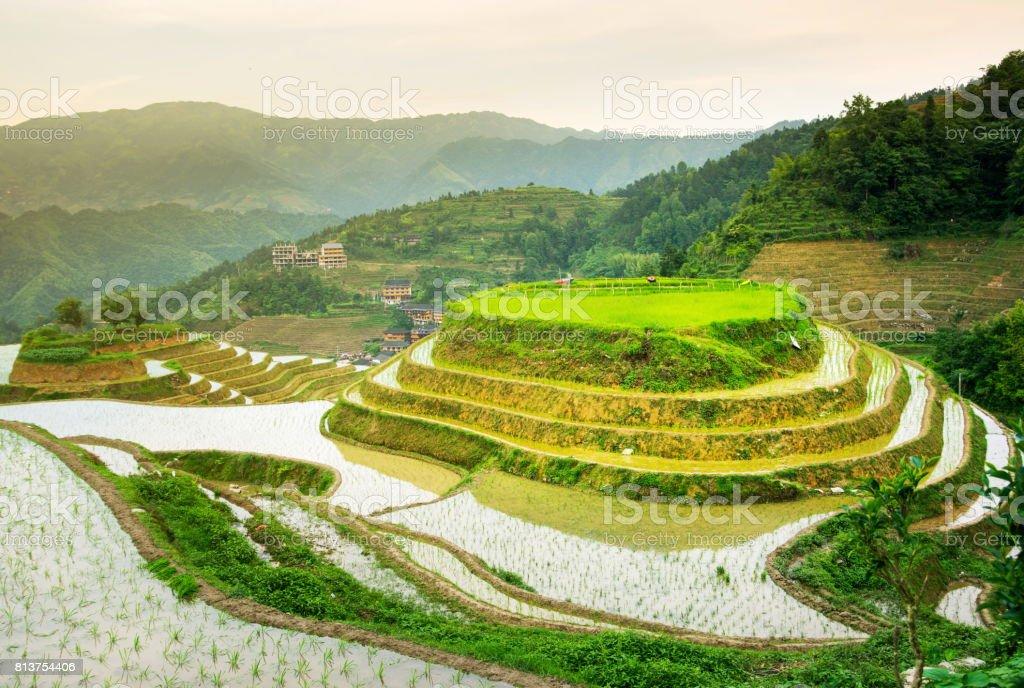 Campo De Terrazas De Arroz De Longji área De Guilin China