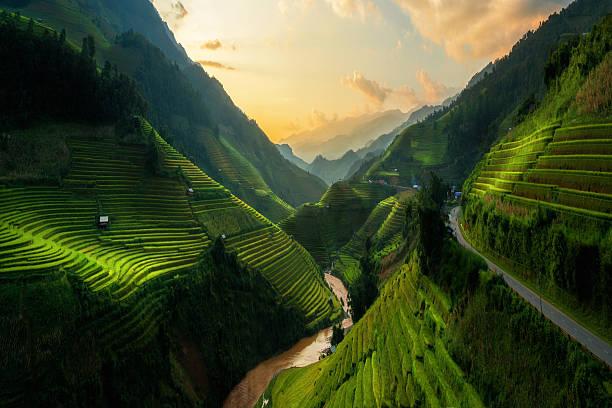 terraced rice field in mu cang chai, vietnam - vietnam stockfoto's en -beelden