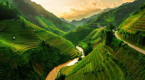 Terraced rice field in mu cang chai vietnam picture id624183176?b=1&k=6&m=624183176&s=612x612&w=0&h=7aypjl0olr73c9p6qcjpitpukqzyqaxhmqxyjsmgqoy=
