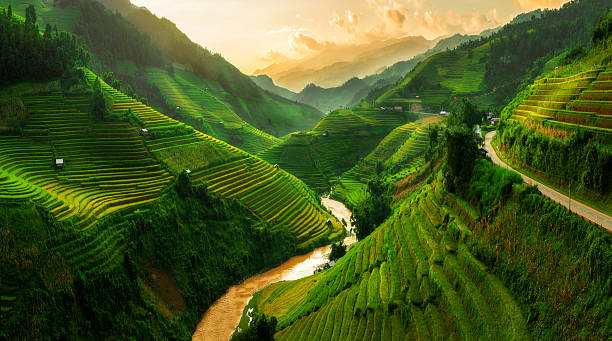 terraced rice field in mu cang chai, vietnam - 地勢景觀 個照片及圖片檔
