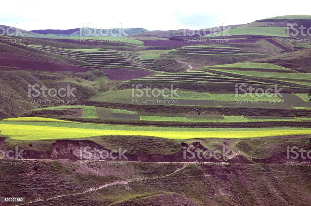 Terraces and agricultural fields on the Loess Plateau of Inner Mongolia China stock photo
