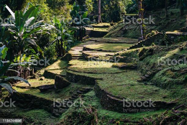 Terraces of the lost city in the sierra nevada de sante marta santa picture id1134244695?b=1&k=6&m=1134244695&s=612x612&h=rvxe3ry8wk bk1sj29pnwzzyqh9vubz63hroibij5xc=
