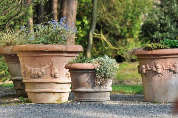 terracotta pots in garden - blumentopf groß stock-fotos und bilder