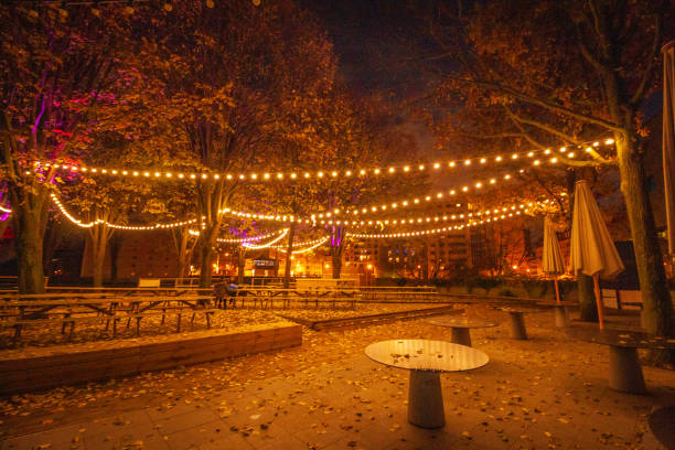 Best Nuit Stock Photos Pictures Royalty Free Images Istock