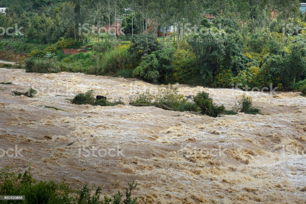 Terrible torrential water on river in flood season stock photo