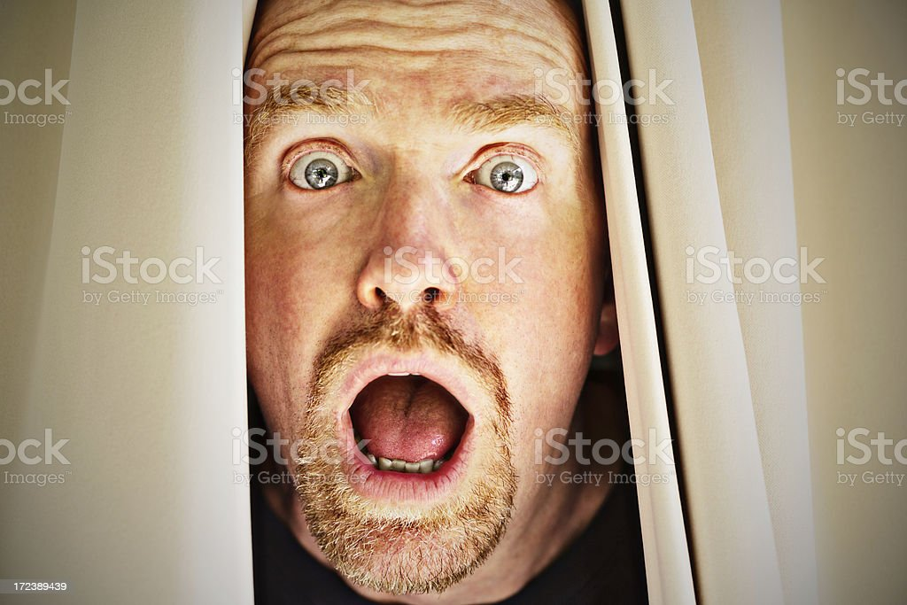 Terrified mature man looks through drapes, wide-eyed and gasping royalty-free stock photo