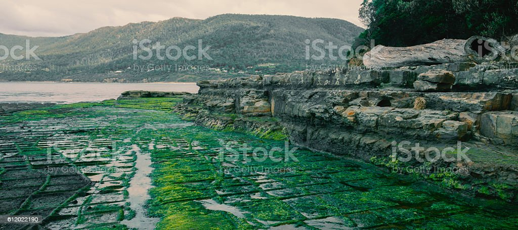 Tessellated Pavement in Pirates Bay. stock photo