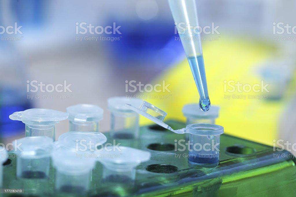 test tubes and dropper stock photo
