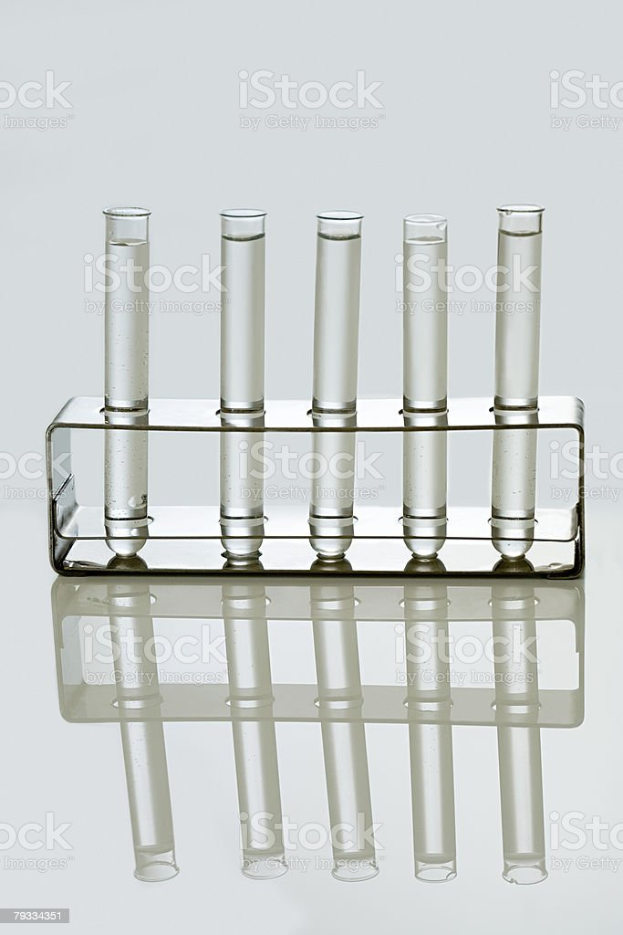 Test tubes in a holder royalty-free stock photo