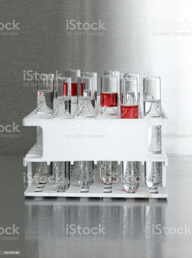 test tubes in rack XXL royalty-free stock photo
