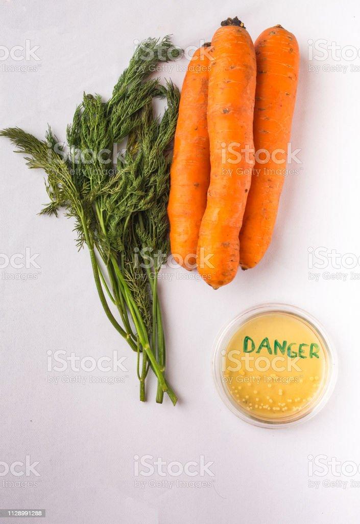 Testen rohes Gemüse für Escherichia coli – Foto