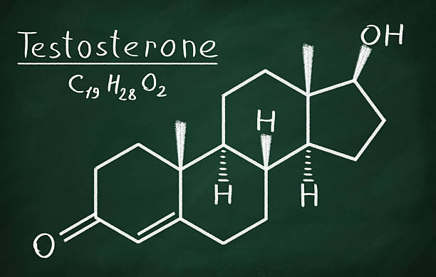 testosterone - testosterone stock pictures, royalty-free photos & images