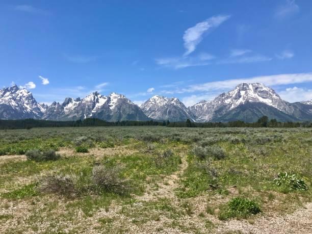 Teton Mountain Range in Distance stock photo