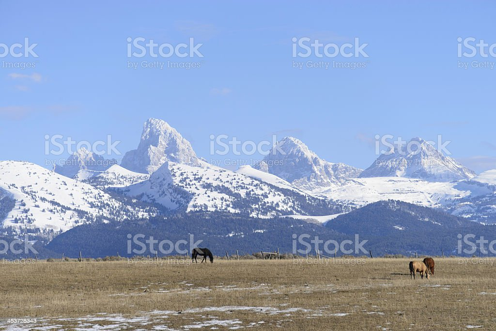 Teton Mountain's from Idaho side stock photo