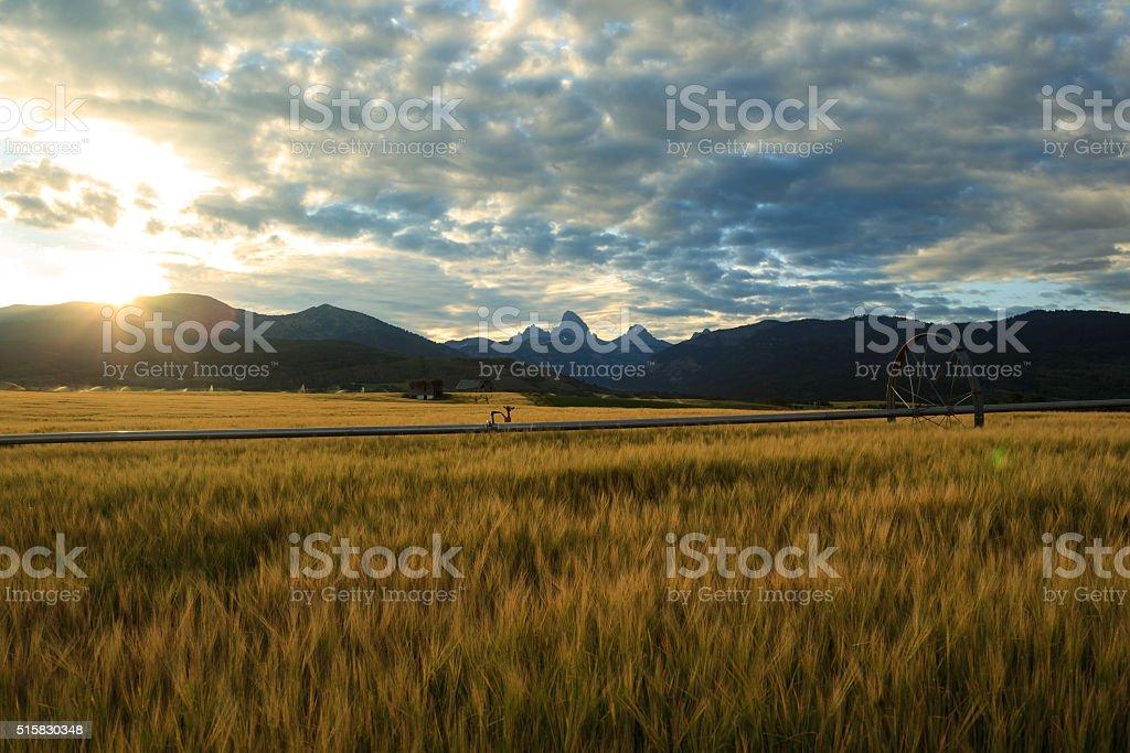 Teton Valley Sunrise stock photo