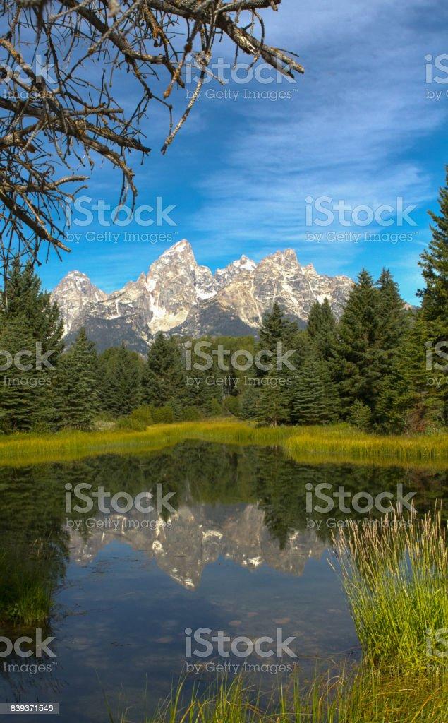Teton Views stock photo