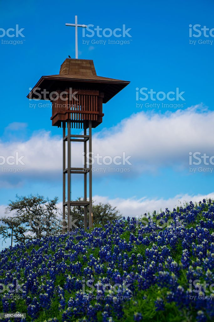 Texas Bluebonnet Flowers Church steeple stock photo