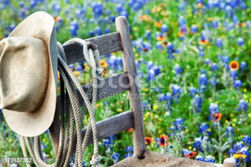 Texas Bluebonnets:   Old wooden chair, rope, hat and bluebonnets.