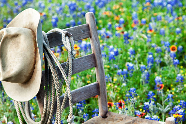 Texas Bluebonnets: Old wooden chair, rope and hat stock photo