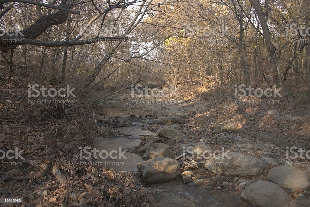 Texas creek in late autumn royalty-free stock photo