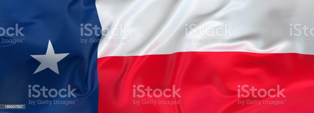 Bandera de Texas banner - foto de stock