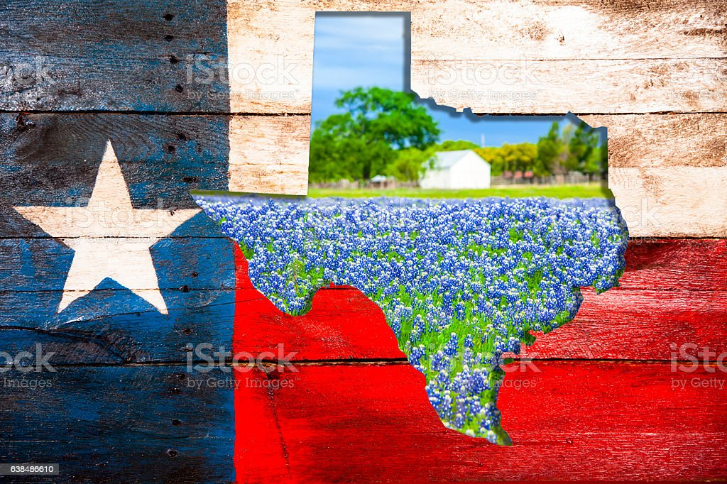 Texas flag, state cut out with bluebonnet flowers. stock photo