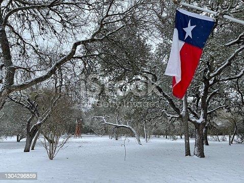 istock Texas landscape scene in snow 1304296859