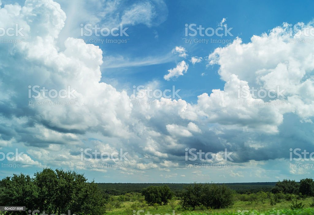 Texas landscape with clouds, trees and foliage stock photo