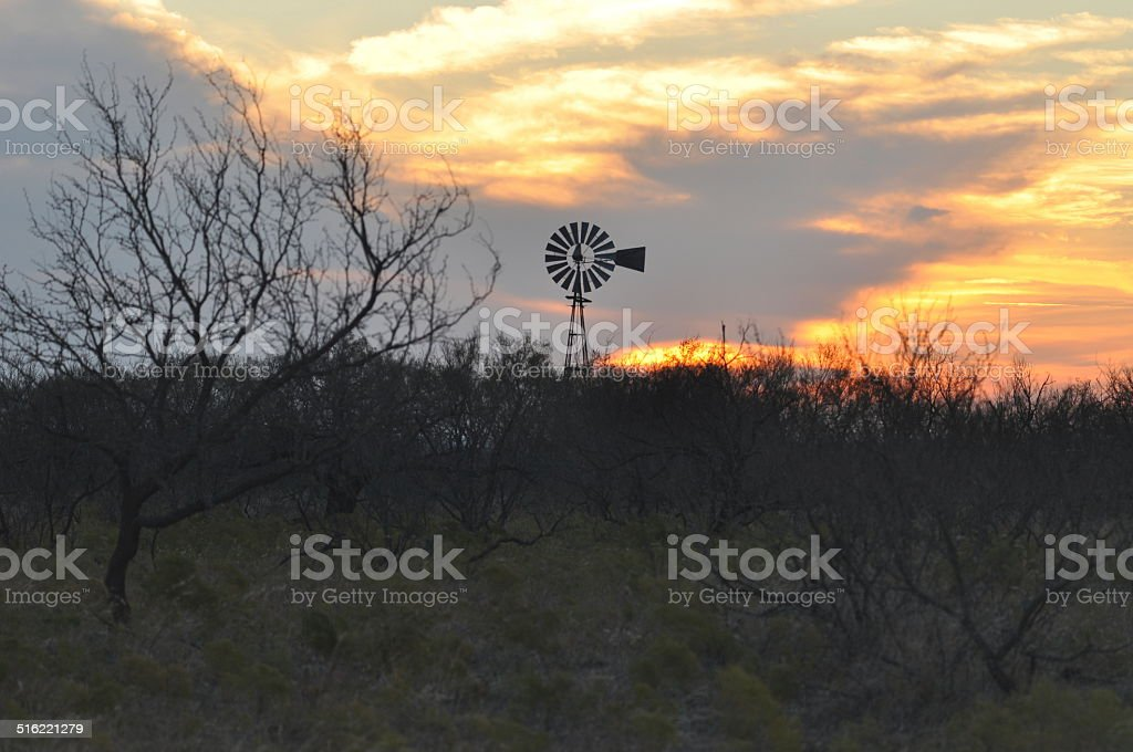 Texas Windmill at Sunset above the Mesquite stock photo